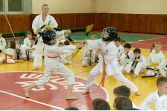 Семинар по кобудо школы Вакаяма Кай10